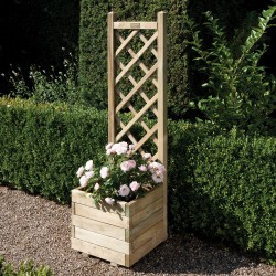 Square Flower Planter with Climbing Trellis