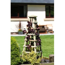 Garden Obelisk 120cm height